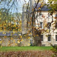 The Lawn in Autumn