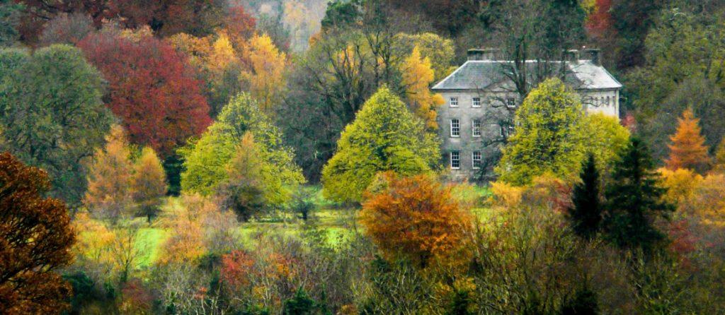 roundwood-in-autumn-450px-aspect